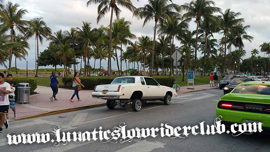 Parked on the wrong side of Ocean Drive